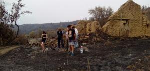 Incendio forestal en Chile