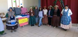Finalización de talleres en Patacamaya